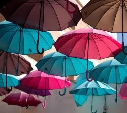 选雨伞到云南昆明天尚 雨蓬厂